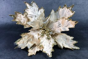 Poinsettia - Gold