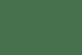Necklace - White Enamel Lily