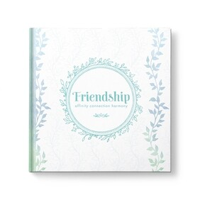 Friendship Affinity Connection Harmony